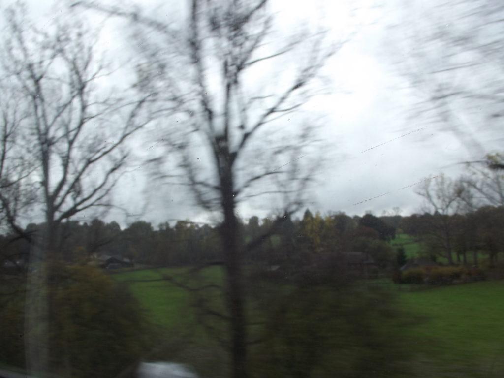 on the train to brighton